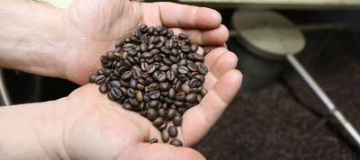 Beans auf Röstereibesuch in Neapel