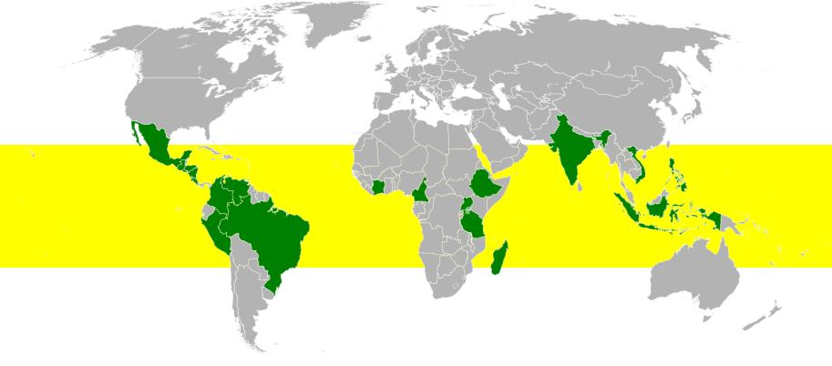 Coffee Belt - Coffee growing regions