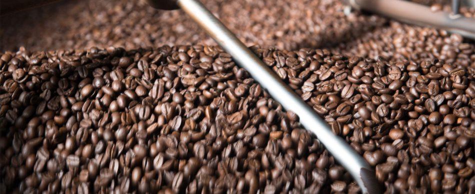 Kühlung der frisch gerösteten Kaffeebohnen