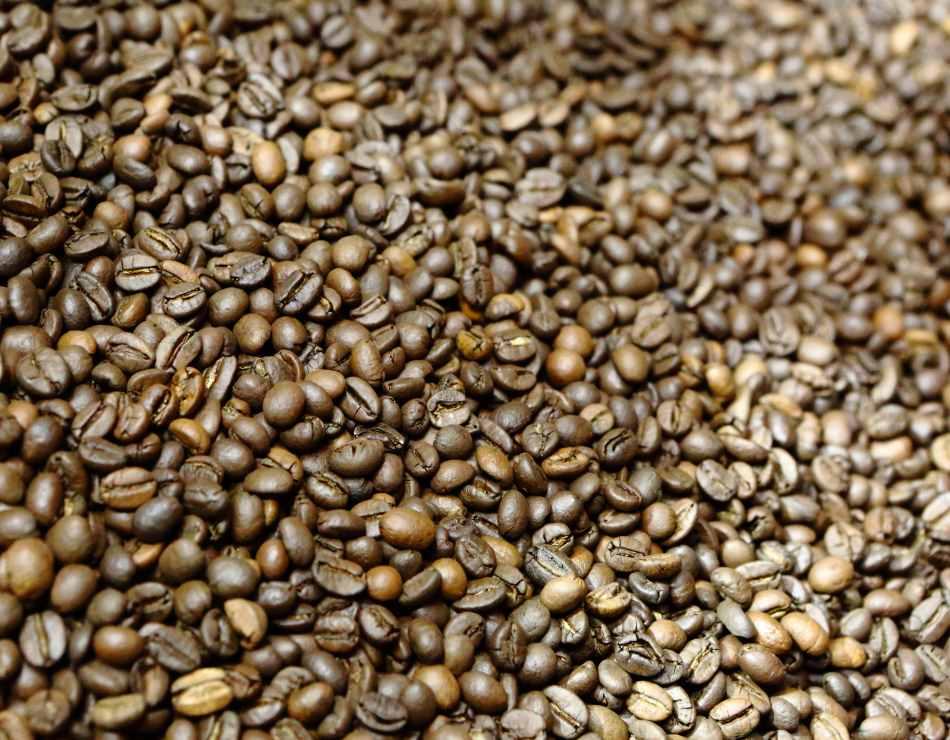 Caffè Grosmi Kühlung der frisch gerösteten Espressobohnen