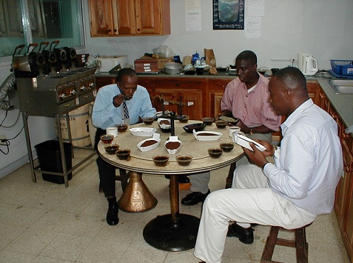 Jamaica Blue Mountain Cupping