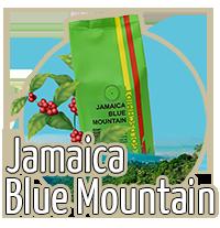 Jamaica Blue Mountain bei Beans Kaffeespezialitäten Wien
